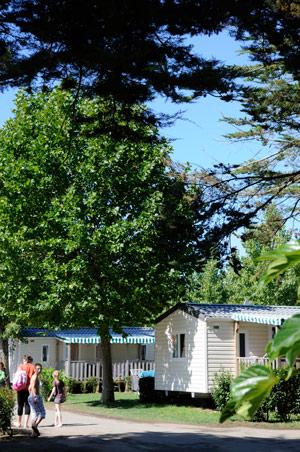 camping 4 étoiles Vendée
