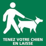 logo chien en laisse