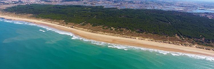 Le camping le Domaine de l'Orée en bord de mer en Vendée c'est vraiment un bon plan !