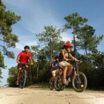 pistes cyclables dès la sortie du camping