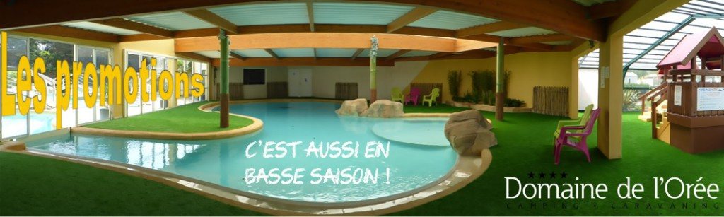 camping domaine oree promotions en vendee