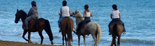 Balade à cheval sur les plages de Vendée
