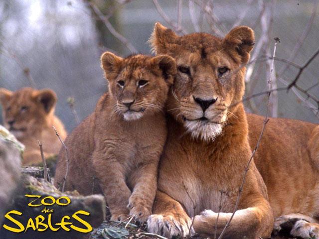 le zoo Les Sables d'Olonne